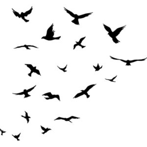 O (FLy On); FLy On; Coldplay; vocal arrangement; choir smatb satb a cappella; bladmuziek; sheet music; koorarrangement; koor; lyrics; chords
